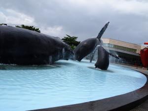 海洋生物館