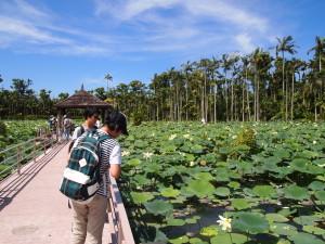 東南植物樂園餵魚