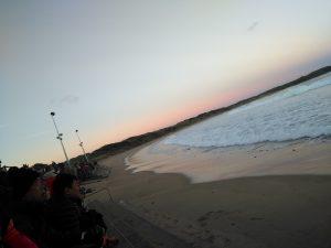 Phillip Island 看企鵝